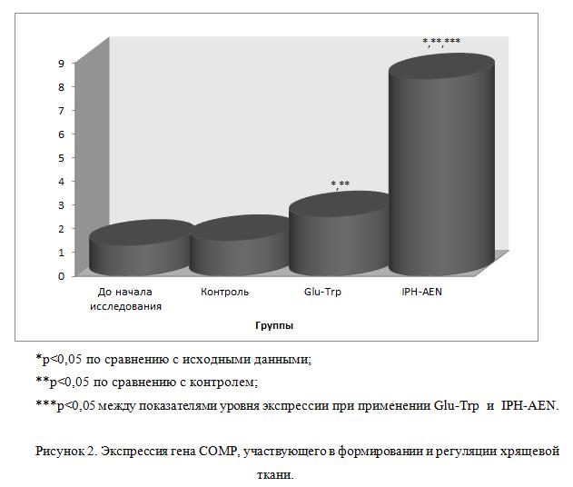 Исследование свойств пептида IPH-AEN: Экспрессия гена COMP