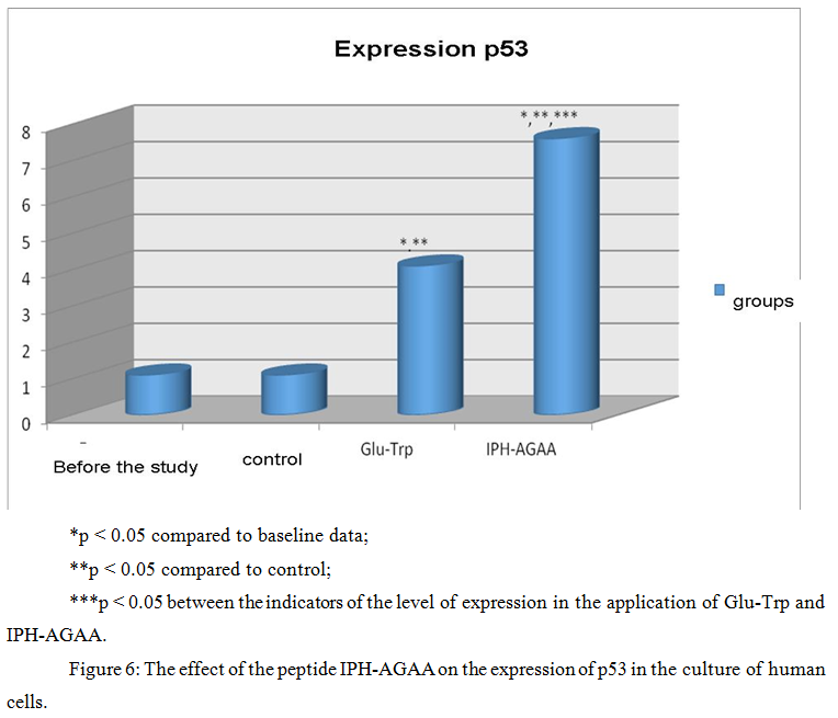15 The effect of the peptide IPH-AGAA on the expression of p53 06